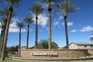 Cobblestone Farms Maricopa 1